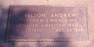 Grave of Andrew Nelson, 1st Wisconsin Volunteer Infantry, in Wisconsin